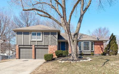 Overland Park Single Family Home For Sale: 9024 Carter Circle