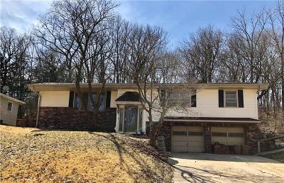Buchanan County Single Family Home For Sale: 2920 Hampton Road