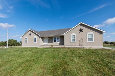 Cass County, Clay County, Platte County, Jackson County, Wyandotte County, Johnson-KS County, Leavenworth County Single Family Home For Sale: 33902 E 315th Street