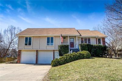 Raymore MO Single Family Home For Sale: $187,500
