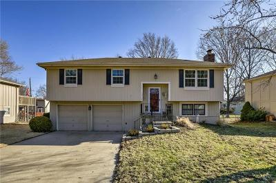 Cass County, Clay County, Platte County, Jackson County, Wyandotte County, Johnson-KS County, Leavenworth County Single Family Home For Sale: 16100 W 153rd Street