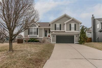 Olathe Single Family Home Show For Backups: 19026 W 163rd Place