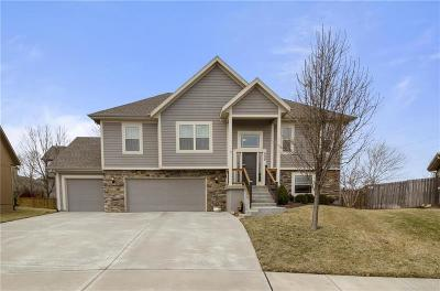 Johnson-KS County Single Family Home For Sale: 880 N Alder Street