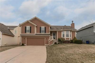 Single Family Home For Sale: 18984 W 163rd Court