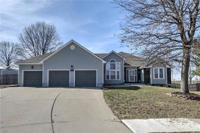 Kearney Single Family Home For Sale: 1902 Blackbird Circle