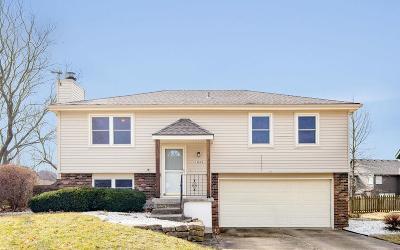 Olathe Single Family Home For Sale: 15615 W 152nd Terrace