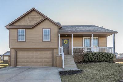 Johnson-KS County Single Family Home For Sale: 715 N Olive Street