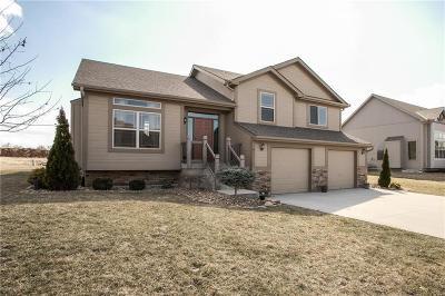 Single Family Home For Sale: 811 W Jack Street