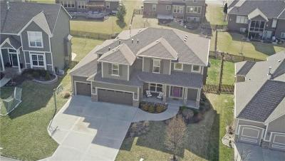Lee's Summit Single Family Home For Sale: 1014 SW Fiord Drive