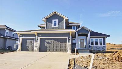 Cass County, Clay County, Platte County, Jackson County, Wyandotte County, Johnson-KS County, Leavenworth County Single Family Home For Sale: 1313 NE Brandywine Drive