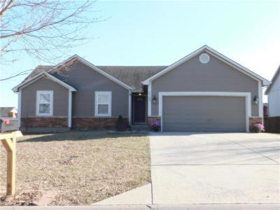 Cass County, Clay County, Platte County, Jackson County, Wyandotte County, Johnson-KS County, Leavenworth County Single Family Home For Sale: 10109 E 220th Place