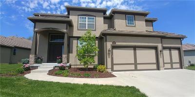 Overland Park Single Family Home For Sale: 16212 Mastin Street