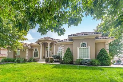 Lenexa Single Family Home For Sale: 8839 Pine Street