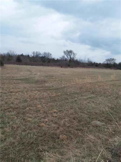 Harrisonville Residential Lots & Land For Sale: S East Outer Road