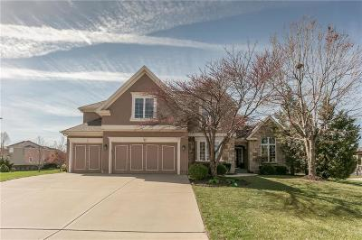 Overland Park Single Family Home For Sale: 9513 W 148th Street