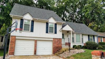 Kansas City Single Family Home For Sale: 3621 NE Wild Plum Lane