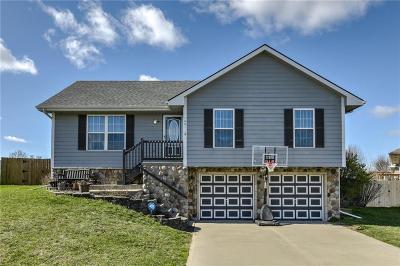 Smithville Single Family Home For Sale: 1001 Coneflower Street