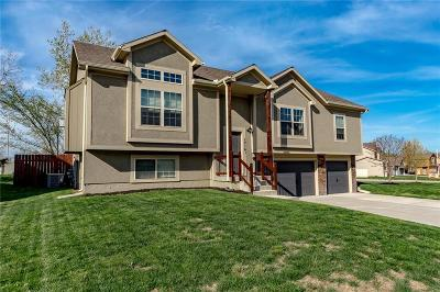 Lee's Summit Single Family Home Show For Backups: 1716 NE Woodview Circle
