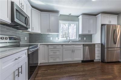 Kansas City Single Family Home For Sale: 10917 Cherry Street