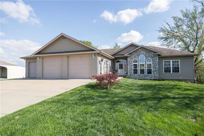 Single Family Home For Sale: 119 Lisa Avenue