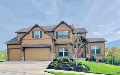 Platte County Single Family Home For Sale: 5889 S National Drive
