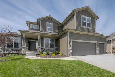 Olathe Single Family Home For Sale: 16798 S Skyview Lane
