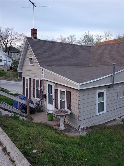 Excelsior Springs Single Family Home For Sale: 617 Henrie Avenue