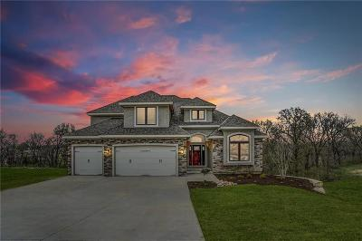 Kearney Single Family Home For Sale: 12520 NE 132nd Terrace