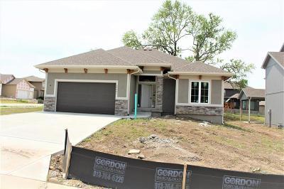 Lenexa Single Family Home For Sale: 24301 W 91st Terrace