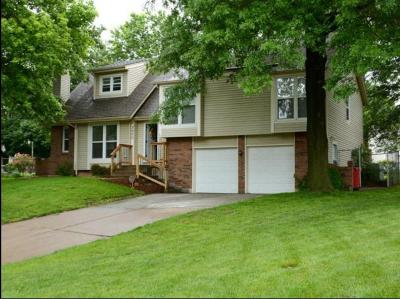 Blue Springs Single Family Home For Sale: 3900 SW Brandywine Circle