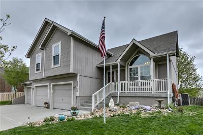 Kansas City MO Single Family Home For Sale: $280,000