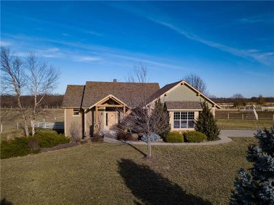Olathe Single Family Home For Sale: 12547 Homestead Lane