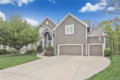 Shawnee Single Family Home For Sale: 4311 Silverheel Street