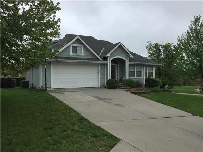 Excelsior Springs MO Single Family Home For Sale: $360,000