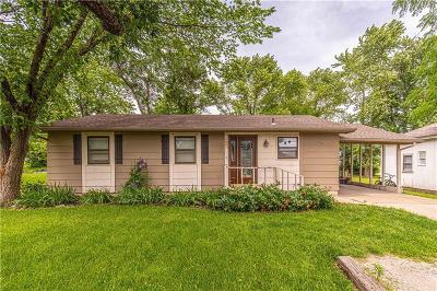 Ottawa Single Family Home For Sale: 933 E Wilson Street