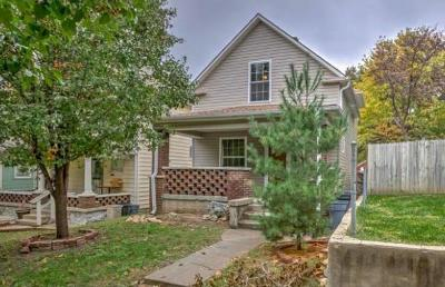 Kansas City Single Family Home For Sale: 232 N 16th Street
