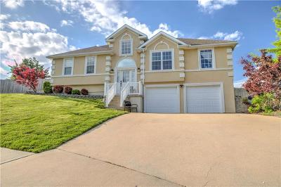 Warrensburg Single Family Home For Sale: 703 Deerfield Court