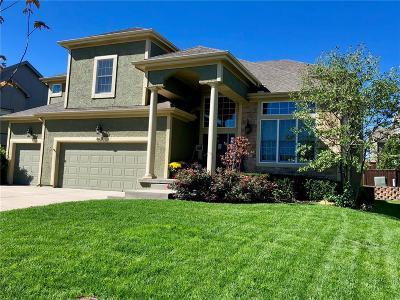 Lenexa KS Single Family Home For Sale: $399,999