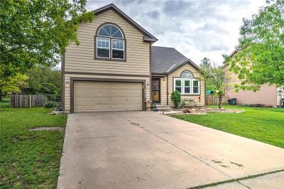 Gardner Single Family Home For Sale: 18313 Spruce Street