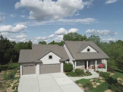 Lee's Summit Single Family Home For Sale: 1408 NE Woods Edge Circle