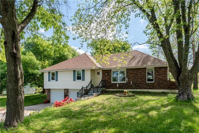 Raymore Single Family Home For Sale: 1003 Barron Road
