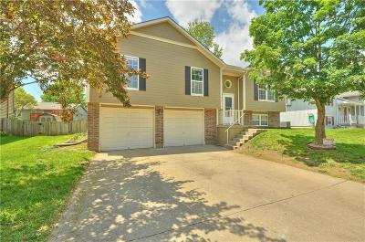 Blue Springs Single Family Home For Sale: 217 NE 6th Street
