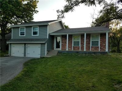Ottawa Single Family Home For Sale: 616 N Hemlock Street