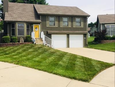 Kansas City Single Family Home For Sale: 6105 N Evans Avenue