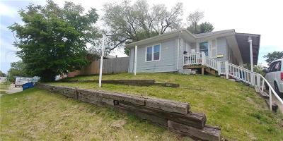 Jackson County Single Family Home For Sale: 9611 E Truman Road