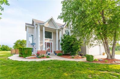 Spring Hill Single Family Home For Sale: 23300 Hickory Court