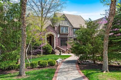 Leawood Single Family Home For Sale: 11305 Buena Vista Street