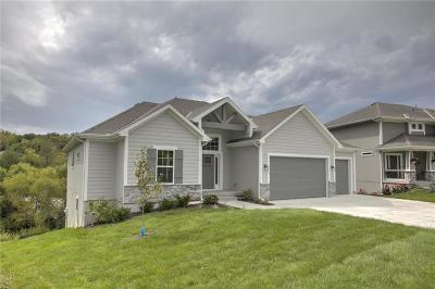 Cass County, Clay County, Platte County, Jackson County, Wyandotte County, Johnson-KS County, Leavenworth County Single Family Home For Sale: 2867 W Sitka Drive