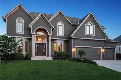 Overland Park Single Family Home For Sale: 14906 Outlook Lane