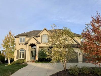 Johnson-KS County Single Family Home For Sale: 9109 Falcon Ridge Drive